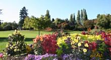Burnaby Visitor's Guide