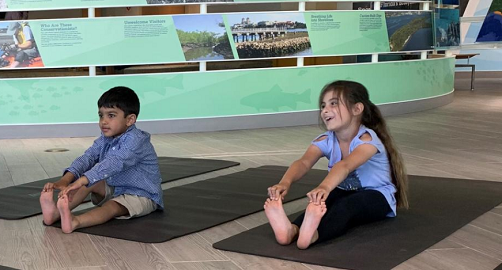 Mindful Moments Kids Yoga