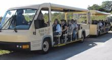 Shark Valley Tram Tours