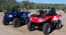 AZ Rentals and More