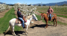 Double Mountain Horse Ranch