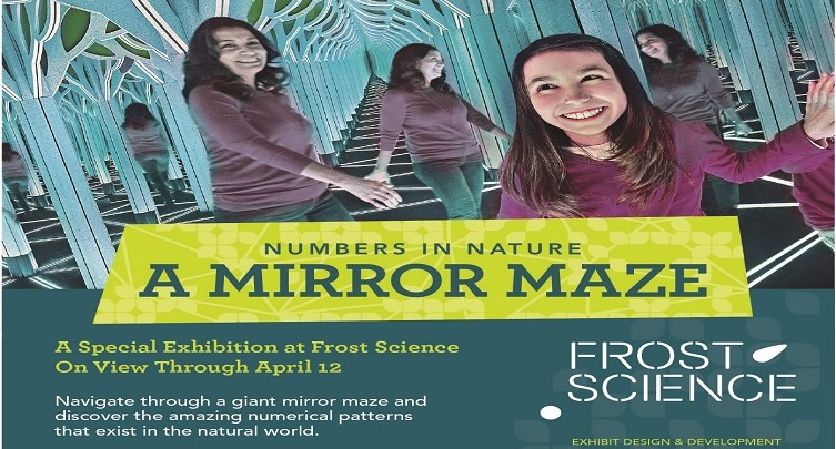 Mirror Maze: Numbers in Nature
