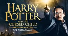 Harry Potter and the Cursed Child - The Tony-Winning Broadway Play