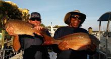 Southern Comfort Charter Fishing