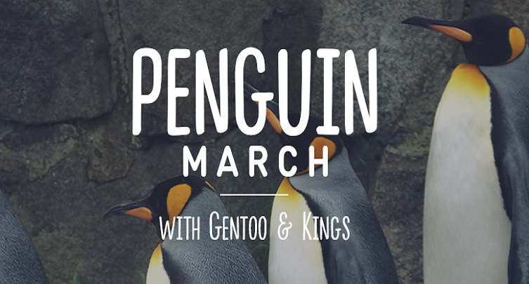 King and Gentoo Penguin March