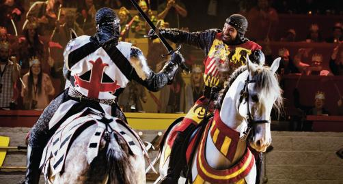 Medieval Times Dinner and Tournament - Lyndhurst