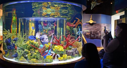 South Florida Science Center and Aquarium | West Palm ...
