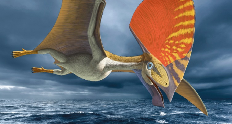 Pterosaur: Flight in the Age of Dinorsaurs