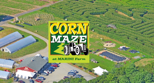 Marini Farm and Maze Park