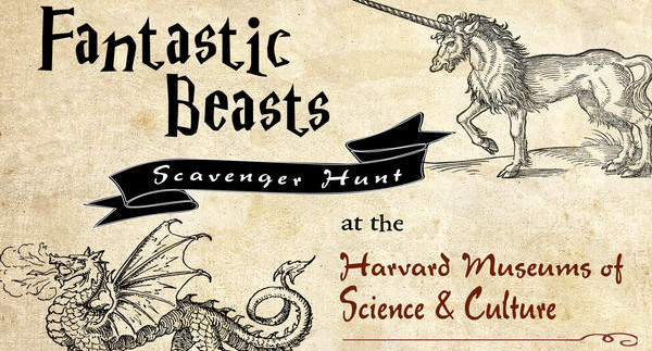 Fantastic Beasts Scavenger Hunt